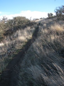 Mud Slick Trail
